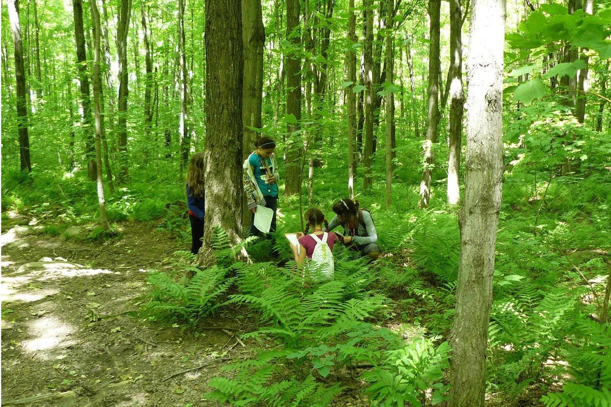 La Fiducie foncière du mont Pinacle finaliste pour les Prix Demain le Québec
